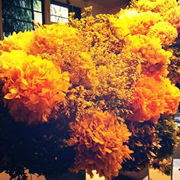 flores 8