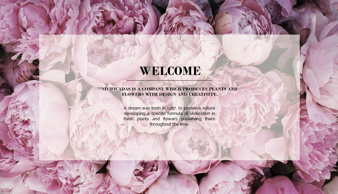 banner-welcome-ingles